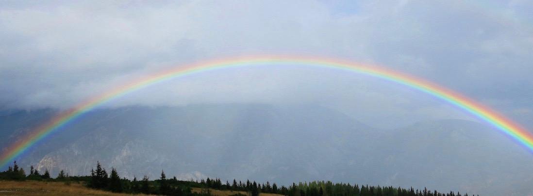 Das Foto zeigt einen Regenbogen, der positive Energie symbolisiert, die man bei Beziehungsproblemen in der Beratung gewinnen kann.