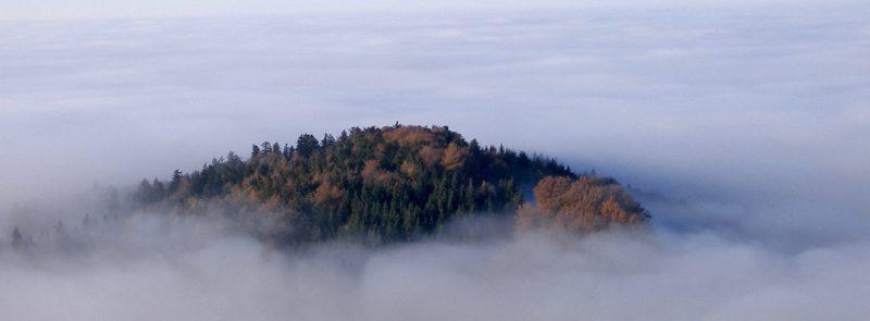 Beratung hilft Stress zu verringern und dadurch Burnout zu vermeiden. Das Foto zeigt einen Berggipfel, der über den Nebel herausragt und symbolisiert den Überblick, den auch schwierige Situationen überstehen kann.