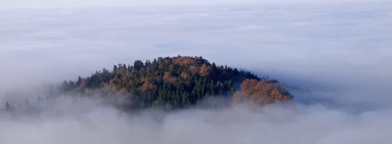 Das Foto zeigt einen Berggipfel, der über den Nebel herausragt und symbolisiert den Überblick, den man in schwierigen Situationen gewinnen kann, indem man Stress und Überforderung abbaut.